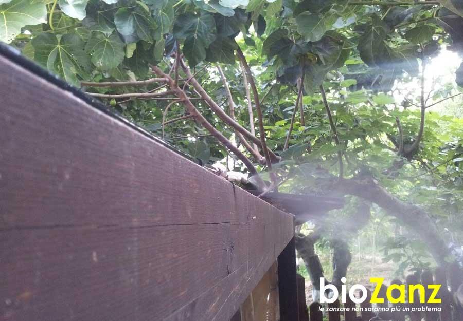 Impianti anzizanzara per il giardino