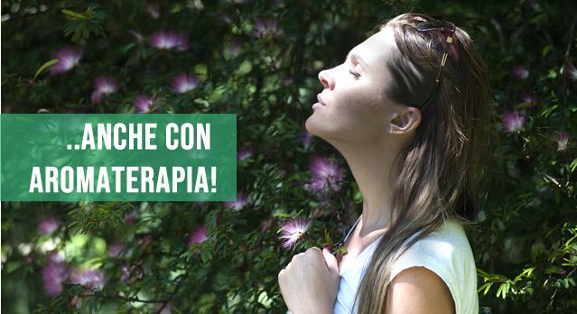 Impianto antizanzare con repellente e aromaterapia profumato