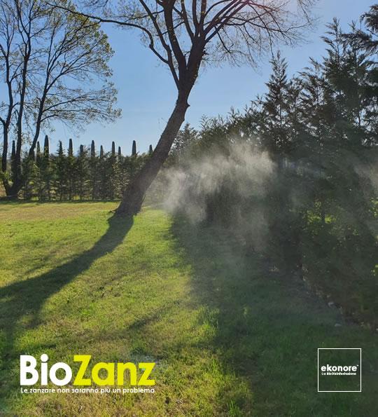 Impianto antizanzare da giardino barriera naturale